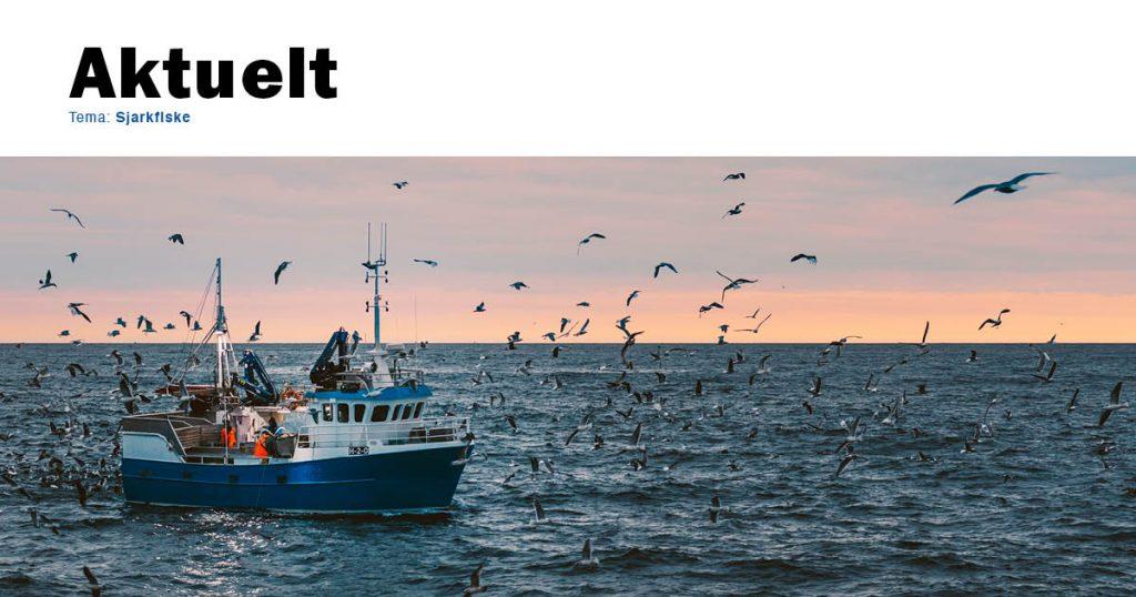 Aktuelthefte sjarkfiske. Last ned!