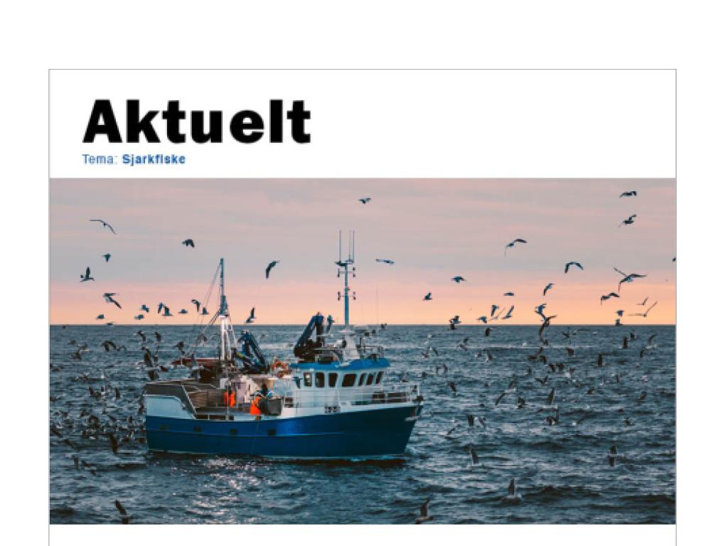 Ny versjon av temahefte for sjarkfiske.